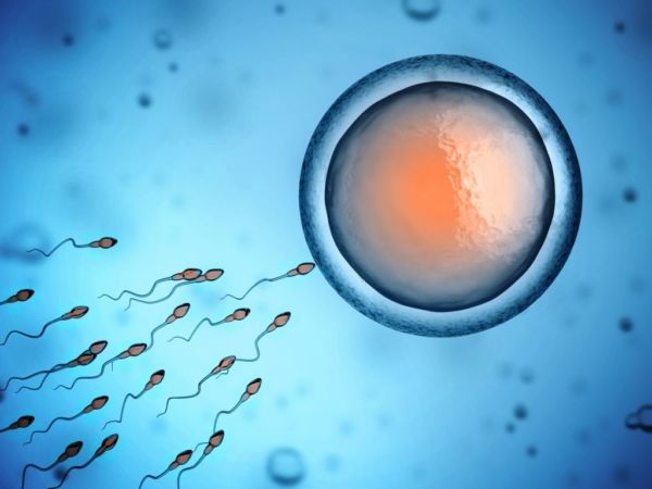 Τι σχέση έχει η γεύση με την ανδρική γονιμότητα; | imommy.gr