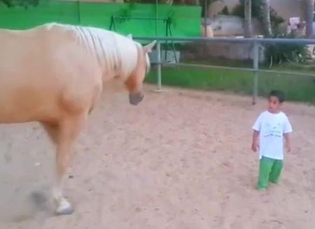 Βίντεο: Η αντίδραση ενός άγριου αλόγου όταν έρχεται σε επαφή με ένα παιδάκι με σύνδρομο Williams | imommy.gr
