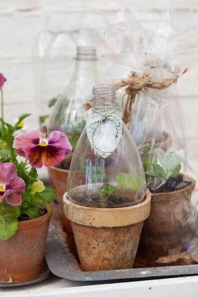 Πώς να προστατέψω τα μικρά φυτά μου από το κρύο και την παγωνιά; | imommy.gr