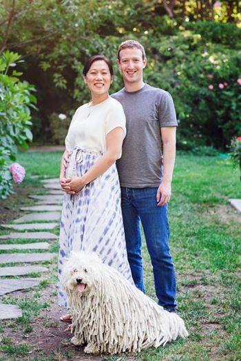 Μαρκ Ζούκερμπεργκ: Ο ιδρυτής του Facebook θα γίνει πατέρας | imommy.gr