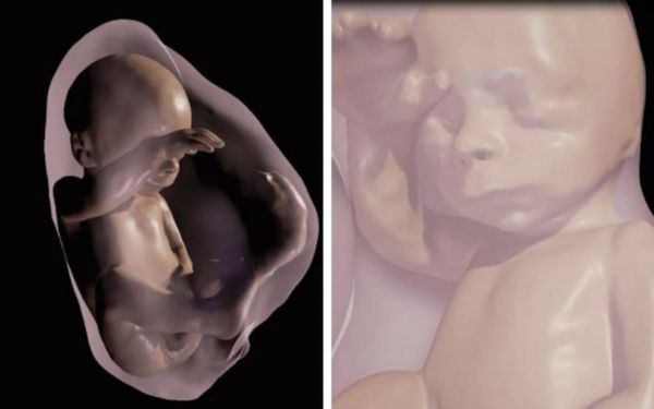 Δείτε το έμβρυο μέσα στη μήτρα μέσω της Εικονικής Πραγματικότητας   imommy.gr