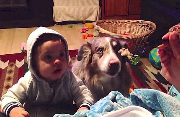 Βίντεο:  Πες… «μαμά»! | imommy.gr