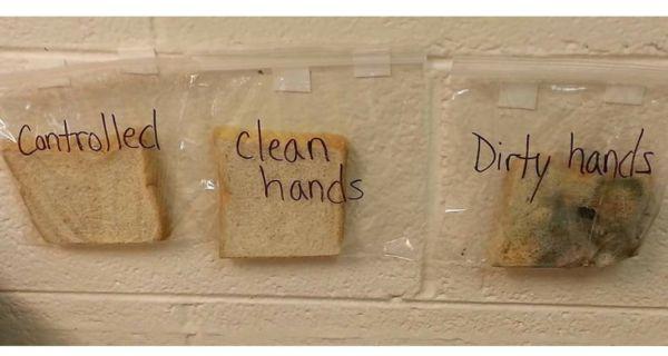 Δασκάλα αποδεικνύει με έξυπνο πείραμα πόσο επικίνδυνο είναι να τρως με βρώμικα χέρια | imommy.gr