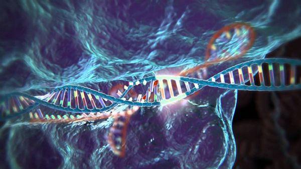 Επεξεργασία γονιδίου με «αποκοπή και επικόλληση» στην εξωσωματική γονιμοποίηση | imommy.gr