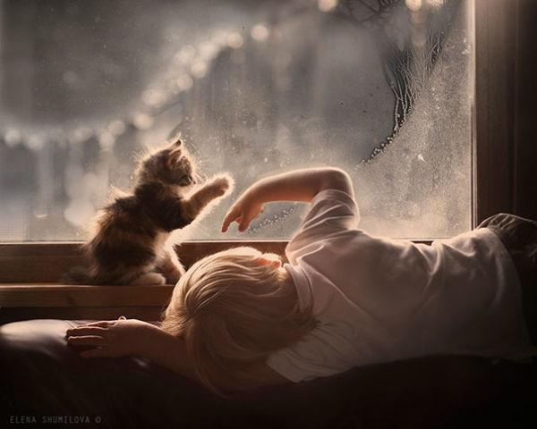 Οι γάτες στο σπίτι μειώνουν τον κίνδυνο άσθματος στα παιδιά | imommy.gr
