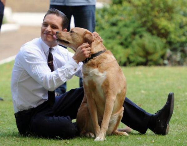 Ο Τομ Χάρντι αποχαιρέτησε τον αγαπημένο του σκύλο | imommy.gr