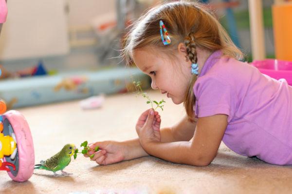 Πώς θα προστατεύσετε το παιδί από πέσιμο | imommy.gr