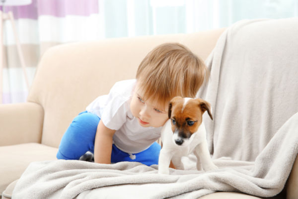 Πώς διαχειριζόμαστε την επαφή του παιδιού με τον επιθετικό σκύλο | imommy.gr