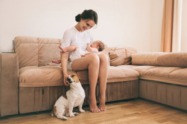 Τα 5 μυστικά για να παίζει το παιδί με ασφάλεια με το σκύλο   imommy.gr