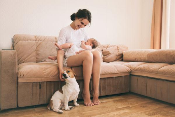 Πρέπει να κρατώ μακριά το κατοικίδιο από το νεογέννητο;   imommy.gr