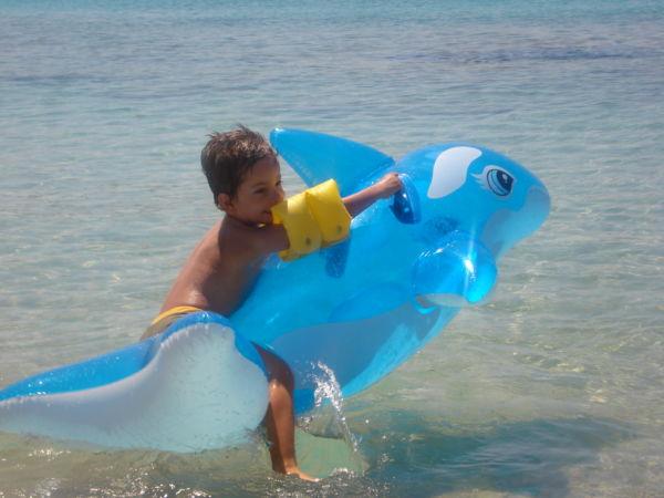 Το παιδί και το δελφίνι | imommy.gr
