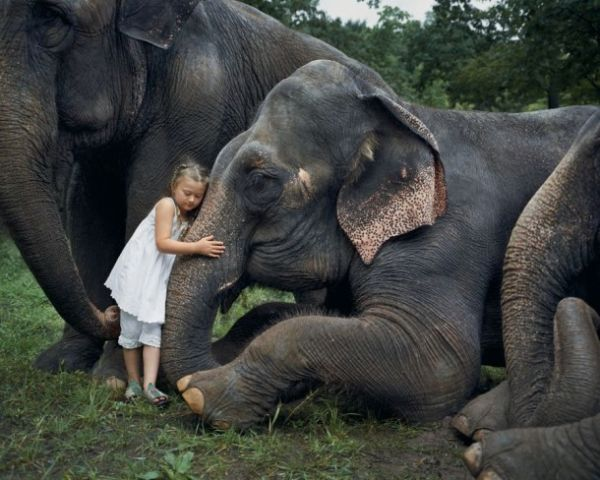 Η μικρή Αμελί και οι καλύτεροι φίλοι της, τα ζώα… | imommy.gr
