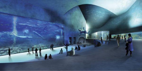 Blue Planet: το πιο εντυπωσιακό ενυδρείο της Ευρώπης! | imommy.gr
