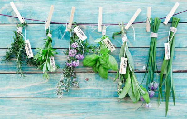 Εγκυμοσύνη και βότανα: Πόσο ακίνδυνα είναι; | imommy.gr