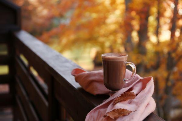 Ζεστή σοκολάτα με άρωμα κανέλας | imommy.gr