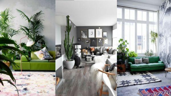 Κάντε το σαλόνι σας «πράσινο» | imommy.gr