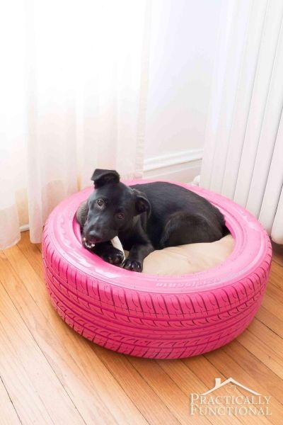 Μια ρόδα μπορεί να γίνει το κρεβάτι του σκύλου σας | imommy.gr