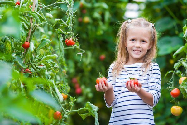 Τα απαραίτητα θρεπτικά στοιχεία στη διατροφή του παιδιού | imommy.gr