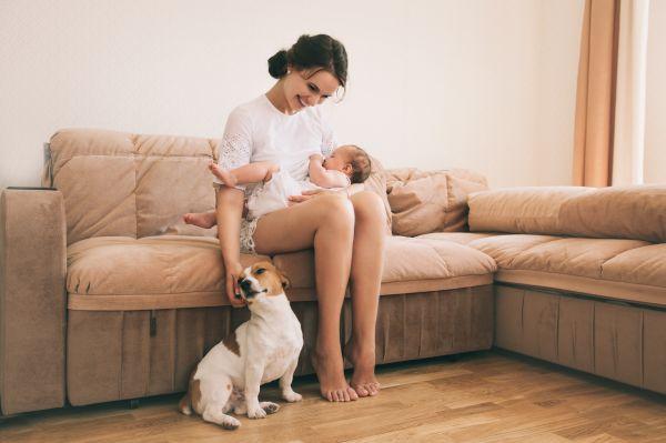 Πρέπει να κρατώ το κατοικίδιο μακριά από το νεογέννητο; | imommy.gr