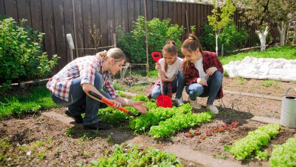 Πώς θα καλλιεργήσετε τα δικά σας λαχανικά | imommy.gr