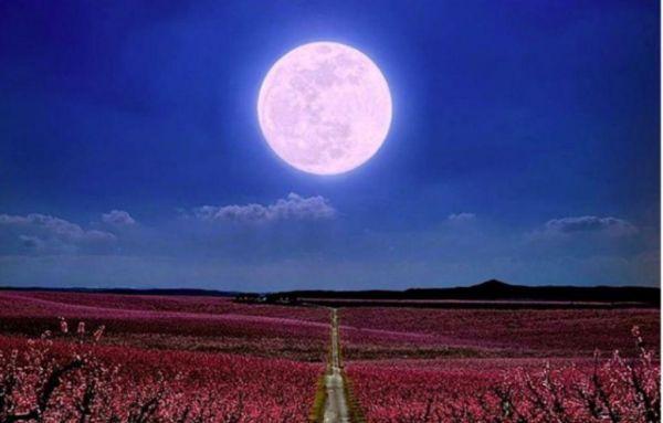 Τι φέρνει η Νέα Σελήνη στους Ιχθύς στο κάθε ζώδιο;   imommy.gr