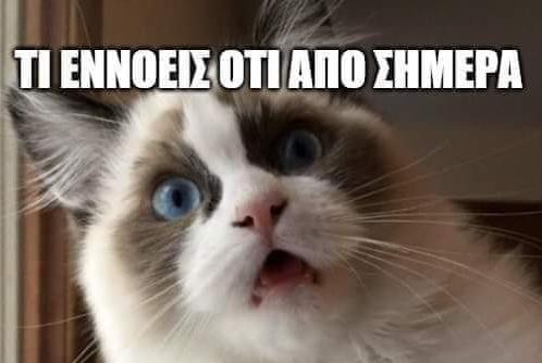Το Twitter οργιάζει για την απαγόρευση κυκλοφορίας | imommy.gr