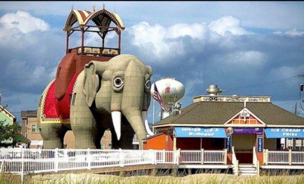 Έχετε μείνει ποτέ μέσα σε έναν… ελέφαντα; | imommy.gr