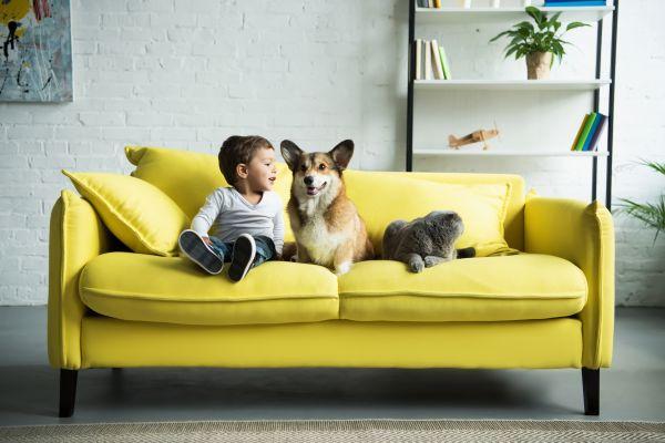 Μπορεί το παιδί να παραμείνει ασφαλές παίζοντας με τον σκύλο; | imommy.gr