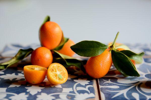 Κουμκουάτ: Ένα μικρό αλλά θαυματουργό φρούτο | imommy.gr