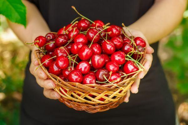 Κεράσια: Επτά οφέλη που προσφέρουν στην υγεία μας | imommy.gr