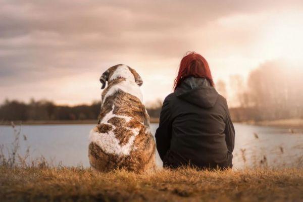 Ζώδια και κατοικίδια : Αυτό είναι το αγαπημένο τους ζώο | imommy.gr