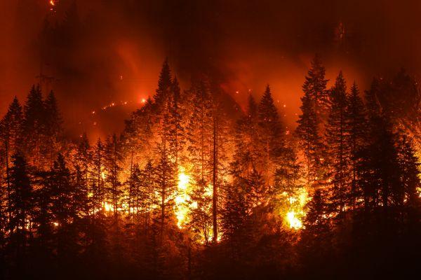 Πολύ υψηλός ο κίνδυνος πυρκαγιάς σήμερα | imommy.gr