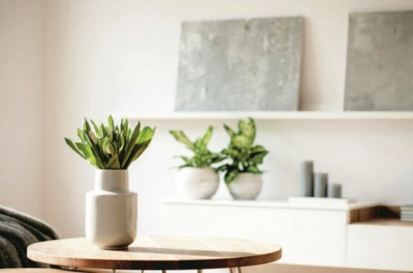 Κάντε το σπίτι σας να μυρίζει υπέροχα | imommy.gr