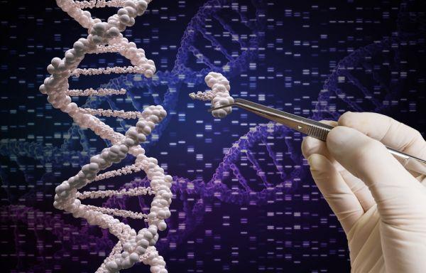 Νέα μελέτη: Γενετικές βλάβες σε έμβρυα που τροποποιήθηκαν με CRISPR | imommy.gr
