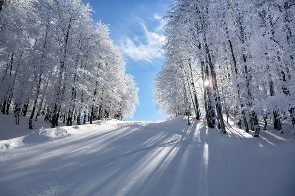 «Μήδεια»: Καταφθάνει με άγριες διαθέσεις – Που θα χιονίσει   imommy.gr