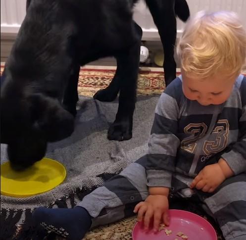 Φίλοι πραγματικά αχώριστοι ένα αγοράκι με τον σκύλο του | imommy.gr