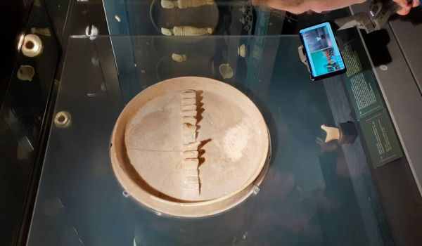 «Zoomστα σχολεία» : Live streaming διαδραστικές ξεναγήσεις από το Μουσείο Κυκλαδικής Τέχνης | imommy.gr