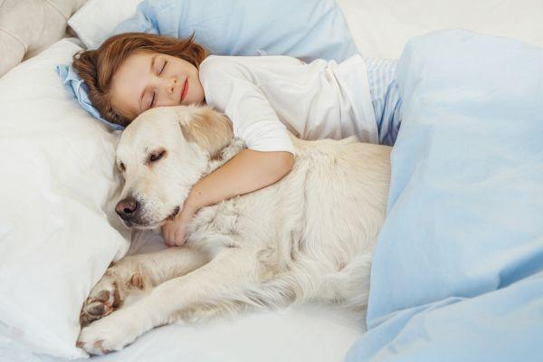Είναι σωστό το παιδί να κοιμάται μαζί με τον σκύλο;   imommy.gr