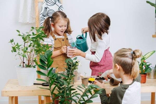Μεταφύτευση: Μαθαίνουμε στο παιδί πώς να την κάνει σωστά   imommy.gr
