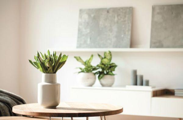 Κάντε το σπίτι σας να μυρίζει υπέροχα (φυσικά) | imommy.gr