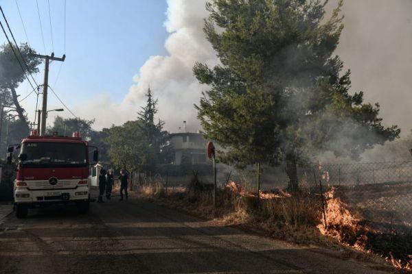 Φωτιά στο λεκανοπέδιο Αττικής – Εκκένωση σε Μαλακάσα, Καπανδρίτι, Πολυδένδρι | imommy.gr