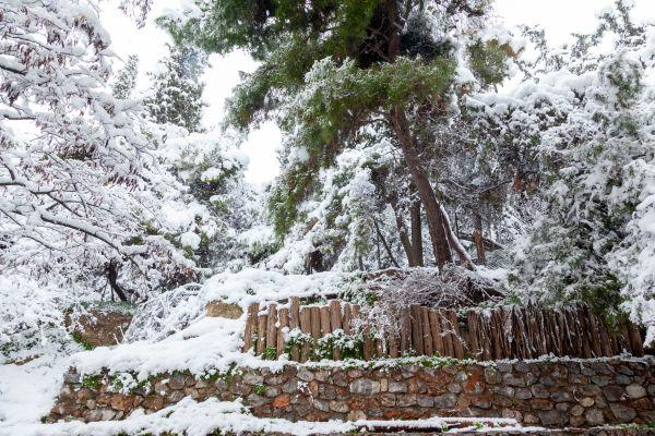 Μερομήνια – Ο φετινός χειμώνας θα είναι πολύ «βαρύς» | imommy.gr